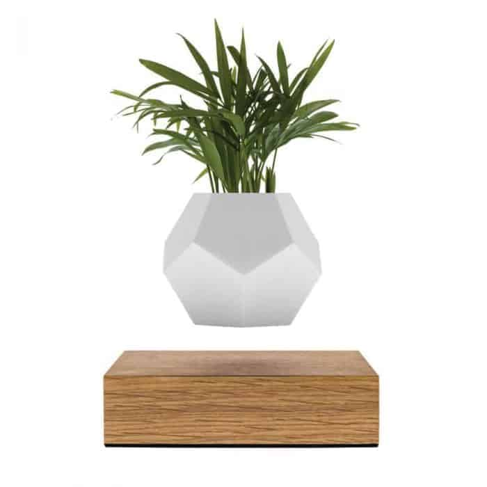 FLYTE Lyfe Planter 1