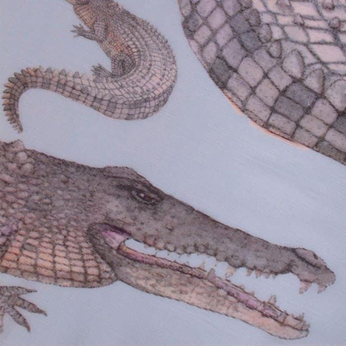 Crocodile Scarf lightblue 3
