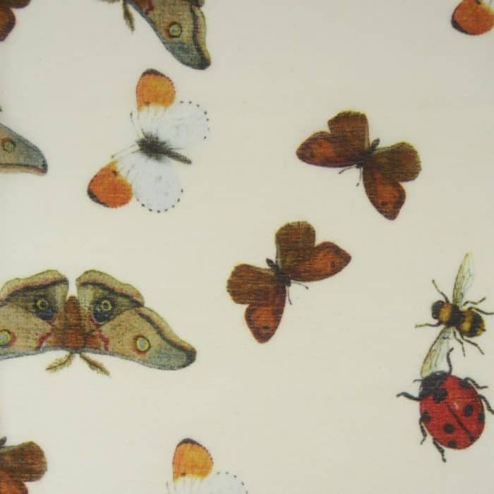 Ladybird white 7